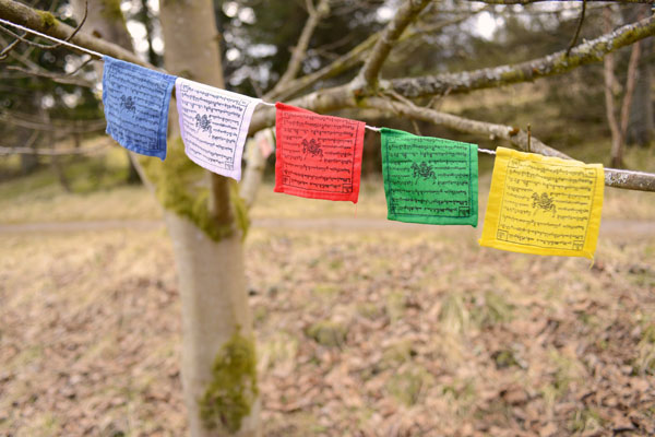 Samye Ling Prayer Flags (Medium)